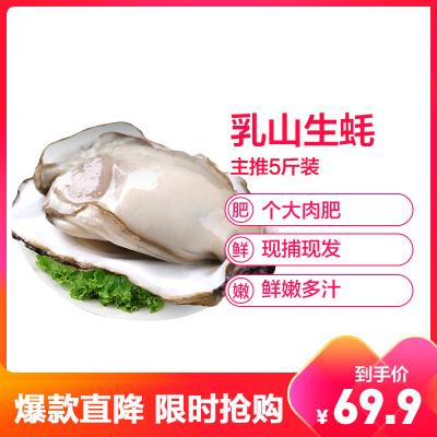 【順豐直達】鮮活乳山三倍體生蠔 店長主推5斤裝 單個100-150g 牡蠣海蠣子 生鮮貝類 新鮮海鮮水產 星優選
