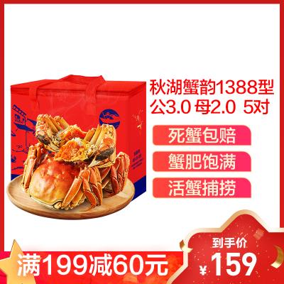 【現 貨】秋湖蟹韻1388型 公蟹3.0兩 母蟹2.0兩 5對10只裝 大閘蟹禮盒 活蟹禮盒 生鮮禮盒