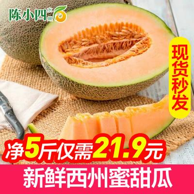 新鮮哈密瓜 西州蜜瓜 5斤 甜瓜 新鮮水果 蘇寧生鮮水果 陳小四水果