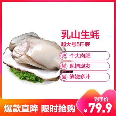 【店長力薦】【順豐直達】鮮活乳山三倍體生蠔 精品超大號5斤裝 單個200-250g 牡蠣海蠣子 生鮮貝類海鮮水產 星優選