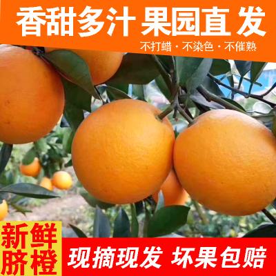 新鲜现摘赣南脐橙 孕妇水果5斤(精选60-70果径)年货送礼佳品