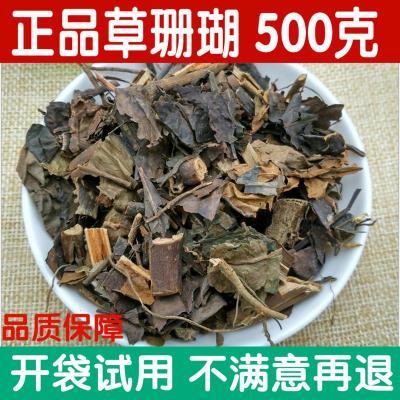 中 正品草珊瑚/腫節風   500g腫節風(九節風)九節茶接骨蓮