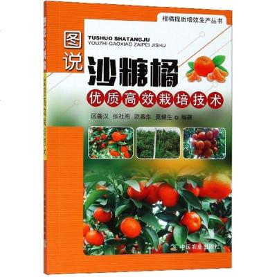 正版 图说沙糖橘优质高效栽培技术 彩图版 柑橘提质增效生产丛书 中国农业出版社 砂糖橘栽培种植技术 砂糖橘管理