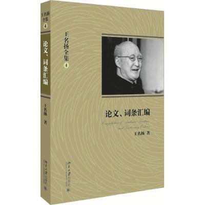 TSY1王名扬全集(4)(论文、词条汇编)