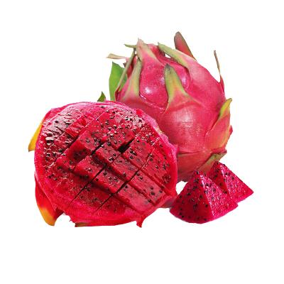 【嘉琪】現摘紅心火龍果金都一號火龍果當季新鮮紅肉火龍果兩個裝(單果約200g)