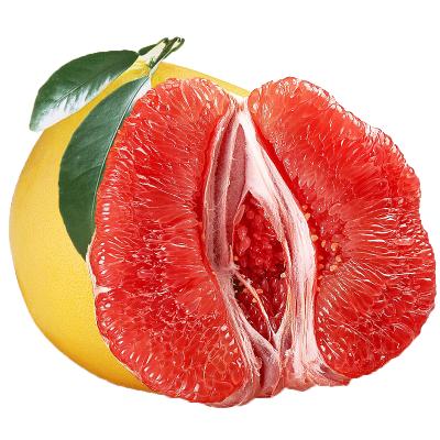 【拍4件发整箱9-10斤】新鲜红肉小蜜柚2-2.5斤 红柚当季现摘平和鲜柚 带箱新鲜水果红肉柚子