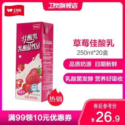 衛崗牛奶 草莓佳酸乳 乳酸菌飲品 250ml*20盒整箱裝