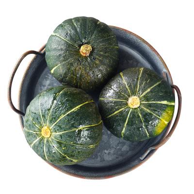 【中華特色】鎮江館 貝貝小南瓜板栗味小南瓜約2.5斤新鮮蔬菜寶寶輔食 偶數發貨
