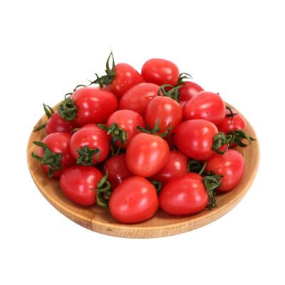 新鮮圣女果2.5斤 千禧櫻桃小番茄水果農家西紅柿 新鮮蔬菜 蘇寧特色生鮮