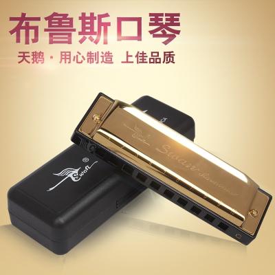天鵝(Tian E)10孔布魯斯口琴C調兒童初學者成人藍調十孔入門口琴樂器其他