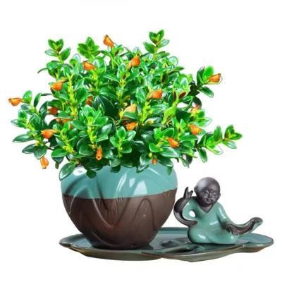 金魚花吊蘭盆栽四季觀花植物辦公室內凈化空氣花卉吸甲醛桌面盆栽開花綠植
