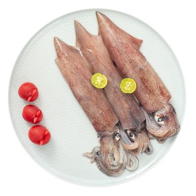品珍鮮活 文萊進口槍烏賊350g 完整新鮮魷魚海鮮水產
