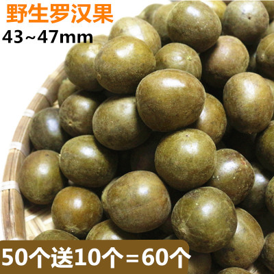 廣西桂林永福特產  羅漢果 批 散裝60個