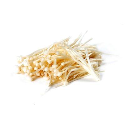 金针菇 4斤 新鲜蔬菜菌菇 产发
