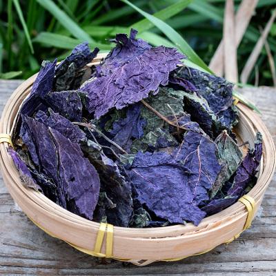 【買3送1】紫蘇葉新鮮 紫蘇葉干食用紫蘇泡茶燒魚去腥500g紫蘇