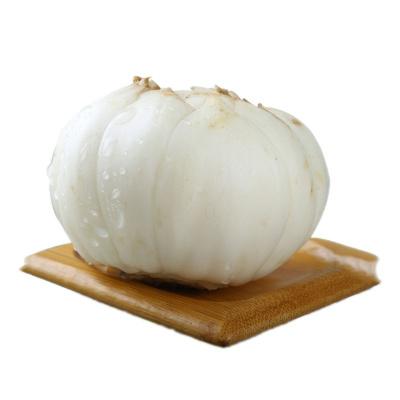 博多客 甘肃兰州新鲜百合 食用甜百合 生鲜 500g*2中号20颗