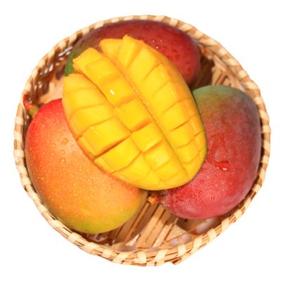 鮮菓籃 芒果水果吉祿蘋果芒5斤裝 攀枝花芒果 新鮮熱帶水果 自營水果
