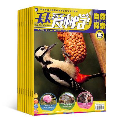 天天愛科學 自然探索(1年共12期) 少兒期刊 雜志訂閱 雜志鋪