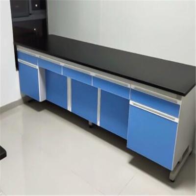 幸旺實驗室柜子 實驗柜XWSYG001