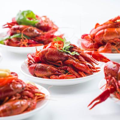 【人氣產品】品坊西餐廳自助晚餐一大一小電子餐券 南京新街口蘇寧諾富特酒店
