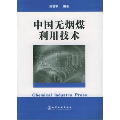 全新正版 中国无烟煤利用技术