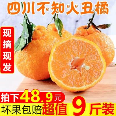 【靚果匯】四川不知火丑橘9斤裝中果 果園現摘發貨 新鮮水果直達