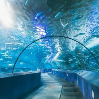 【南京門票】【提前一天預訂】南京海底世界,海底隧道+水族館+海豚表演等,300余種海洋動物等你邂逅~