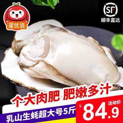 【順豐直達】星優選 鮮活乳山生蠔精品超大號5斤裝 約9-12個 單個200-250g 牡蠣海蠣子 生鮮貝類海鮮