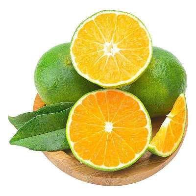 【超低價秒】陳小四水果 新鮮桔子5斤 蜜桔薄皮 青皮橘子 孕婦水果 其他