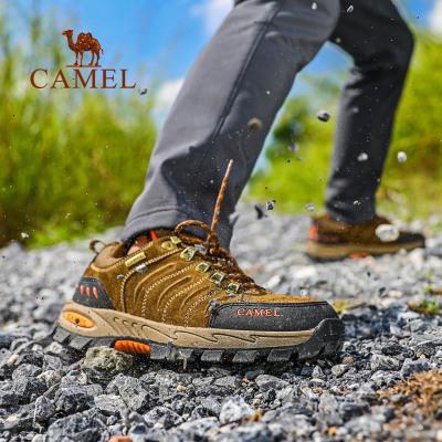 CAMEL駱駝戶外登山徒步鞋 秋冬新款情侶款男女防滑減震耐磨低幫徒步鞋