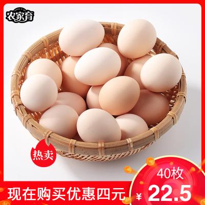 【順豐發貨】農家育40枚裝散養初生蛋 正宗土雞蛋新鮮天然三黃雞蛋山林散養雞蛋