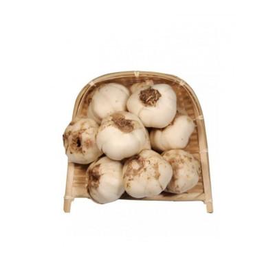 新鲜百合 500g 甘肃兰州 鲜百合干 现挖 农家 食用 甜