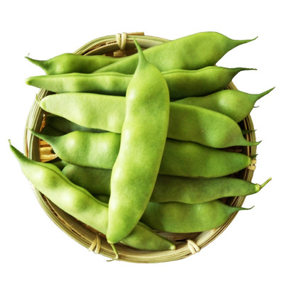 東北新鮮油豆角 農家九月青豆角 新鮮開鍋爛 2.5kg 蔬菜 面豆角 順豐速運