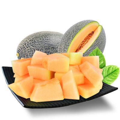 【熊貓鳥】新疆蜜瓜 新鮮網紋甜瓜水果 4-5斤裝 2個左右