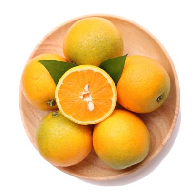 陳小四水果 新鮮秭歸夏橙 2.5斤 玲瓏果 小果 單果約55-65mm 榨汁橙 新鮮水果 生鮮 橙子 其他