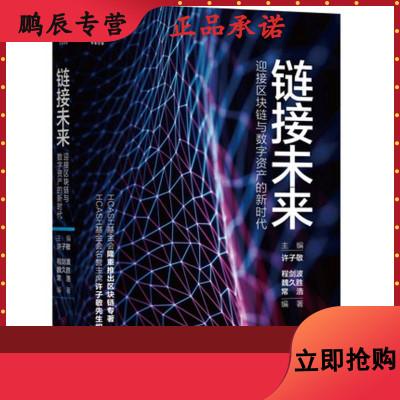 链接未来:迎接区块链与数字资产的新时代 许子敬 机械工业出版