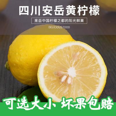 新鲜安岳黄柠檬1斤装 黄柠檬 当季新鲜水果生鲜