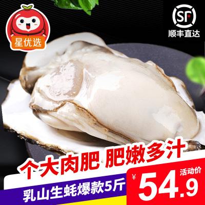 【順豐直達】星優選 鮮活乳山生蠔店長主推5斤裝 約17-24個 單個100-150g 牡蠣海蠣子 生鮮貝類海鮮水產