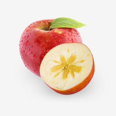 果貴緣 新疆阿克蘇冰糖心蘋果 果經75mm-80mm約12枚 5斤 新鮮水果脆甜多汁