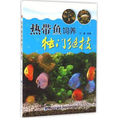 熱帶魚飼養獨門絕技9787533550035福建科學技術出版社