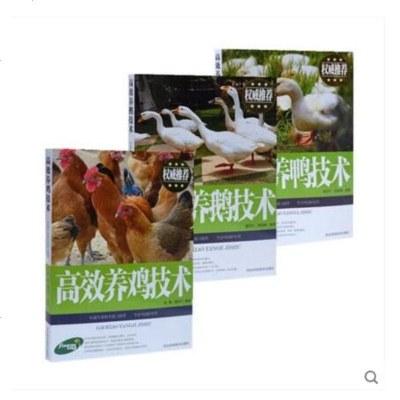 0803正版畜牧/养殖书籍3本 高效养鸡技术+高效养鸭技术+高效养鹅技术 土鸡养殖无公害肉鸡高效饲养技术