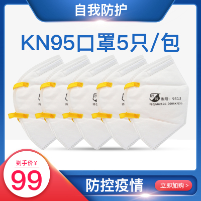KN95口罩防霧霾病菌一次性成人防護口罩病菌透氣5支一包 KN95一包5支)