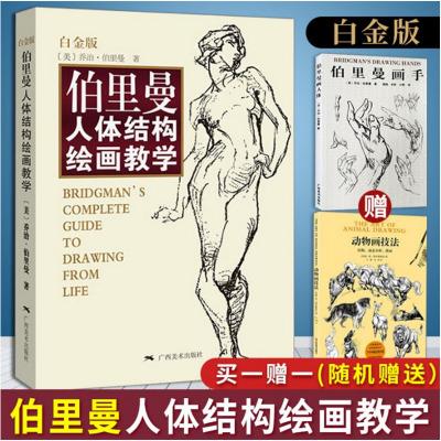 伯里曼人体结构绘画教学 白金版 乔治伯里曼速写素描基础教程游戏动漫设计艺用人体解剖人体结构造型手绘技法书画头手人体人物临