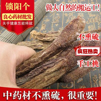 中  鎖陽 金鎖陽個 大漠雙雄配肉蓯蓉500g中草藥店鋪
