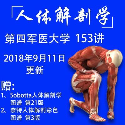 人體解剖學153講第四軍醫大學視頻自學教程精品課全集2018新版
