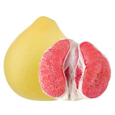 平和紅心柚1個 單果1.7-2.5斤【 拍4件減6元合并發1箱】(偶數發貨)