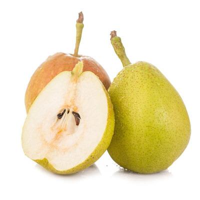 原泽味 新疆库尔勒香梨 5斤 新鲜梨子水果