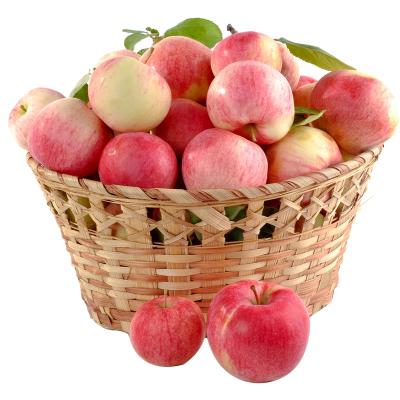 匯爾康(HR) 新鮮大蘋果紅富士帶箱5斤 平安果圣誕果 應季水果 蘇寧生鮮
