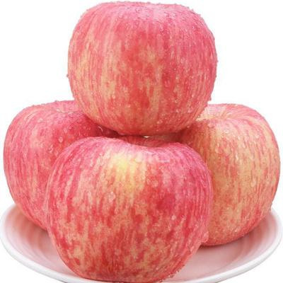 5斤山东烟台红富士苹果新鲜水果甜脆水分足蓬莱红富士85mm9粒