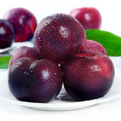 黑布林李子10斤 水果新鮮 李子 新鮮水果